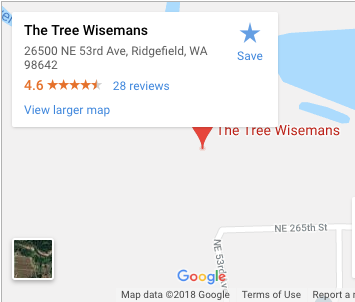 The Tree Wisemans on Google Maps