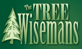 Christmas Tree Farm in Ridgefield WA from The Tree Wisemans